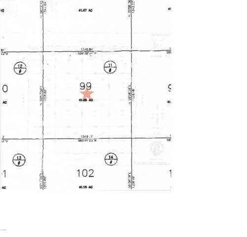 TBD White Mountain Lake Ranches 99, White Mountain Lake, AZ 85912 (MLS #5872729) :: Yost Realty Group at RE/MAX Casa Grande