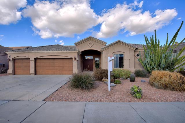 4536 E Monte Cristo Avenue, Phoenix, AZ 85032 (MLS #5872763) :: The W Group