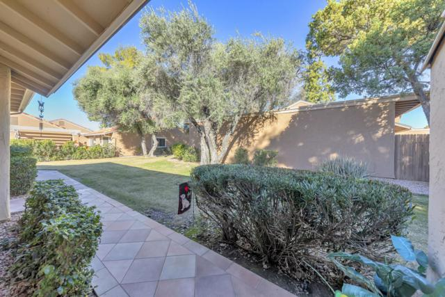 81 Leisure World, Mesa, AZ 85206 (MLS #5872780) :: Yost Realty Group at RE/MAX Casa Grande