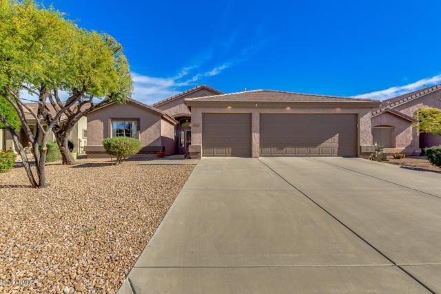 4709 S Jalapa Lane, Gold Canyon, AZ 85118 (MLS #5872800) :: Arizona 1 Real Estate Team