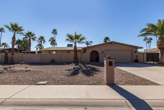5325 E Sheena Drive, Scottsdale, AZ 85254 (MLS #5872819) :: Arizona 1 Real Estate Team