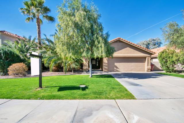 8438 N 85TH Street, Scottsdale, AZ 85258 (MLS #5872910) :: My Home Group