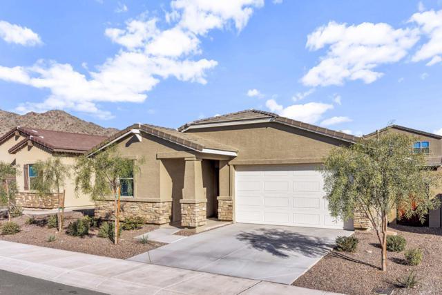 21394 W Palm Lane, Buckeye, AZ 85396 (MLS #5873078) :: Keller Williams Realty Phoenix