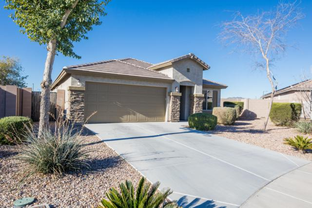 160 S 197TH Avenue, Buckeye, AZ 85326 (MLS #5873089) :: The Pete Dijkstra Team