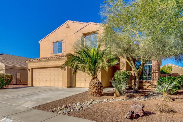 11830 W Camino Vivaz, Sun City, AZ 85373 (MLS #5873134) :: RE/MAX Excalibur
