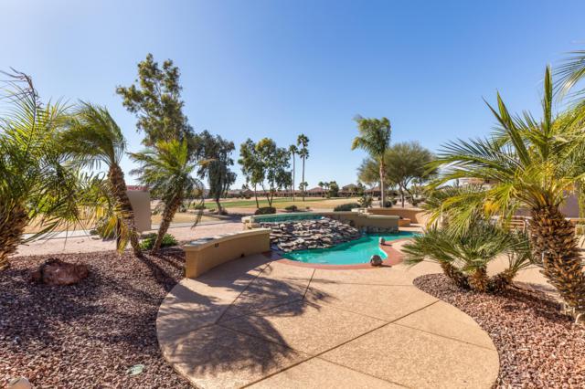 15799 W Edgemont Avenue, Goodyear, AZ 85395 (MLS #5873143) :: The Pete Dijkstra Team