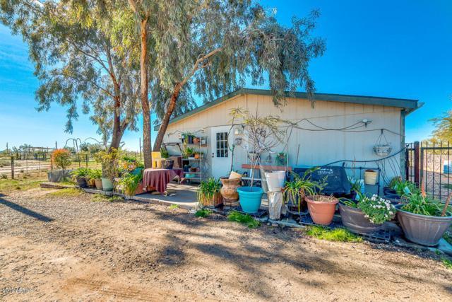 10835 N Showdown Lane, Florence, AZ 85132 (MLS #5873154) :: Brett Tanner Home Selling Team