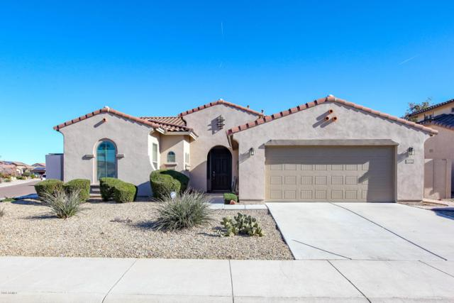 13509 S 180TH Avenue, Goodyear, AZ 85338 (MLS #5873198) :: Occasio Realty