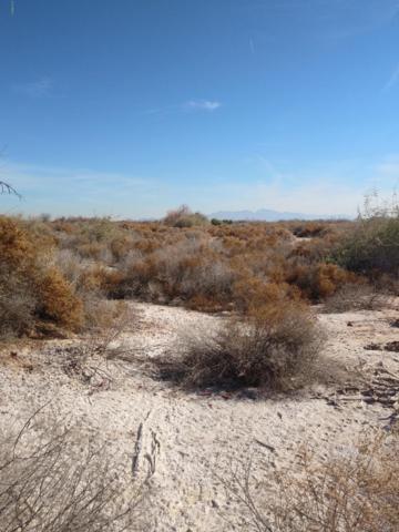 0 W Miller Street, Buckeye, AZ 85326 (MLS #5873203) :: Riddle Realty Group - Keller Williams Arizona Realty