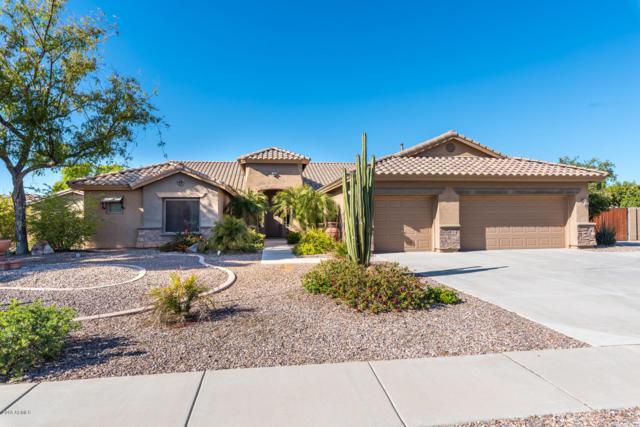 25510 S 116TH Street, Chandler, AZ 85249 (MLS #5873255) :: Yost Realty Group at RE/MAX Casa Grande