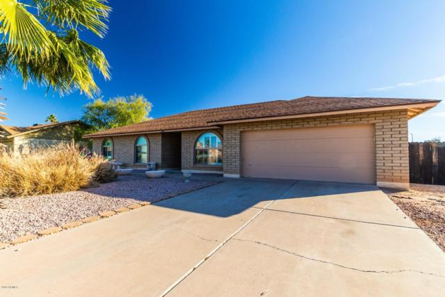 5431 E Dolphin Avenue, Mesa, AZ 85206 (MLS #5873264) :: The Laughton Team