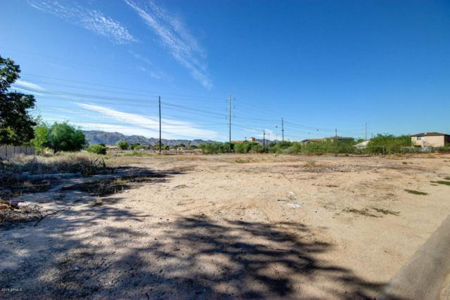 7317 S 9th Place, Phoenix, AZ 85042 (MLS #5873309) :: Riddle Realty