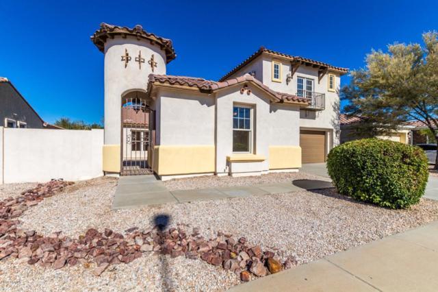 2336 E Balsam Drive, Chandler, AZ 85286 (MLS #5873380) :: Yost Realty Group at RE/MAX Casa Grande