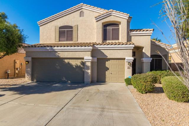 33836 N Pate Place, Cave Creek, AZ 85331 (MLS #5873383) :: Yost Realty Group at RE/MAX Casa Grande