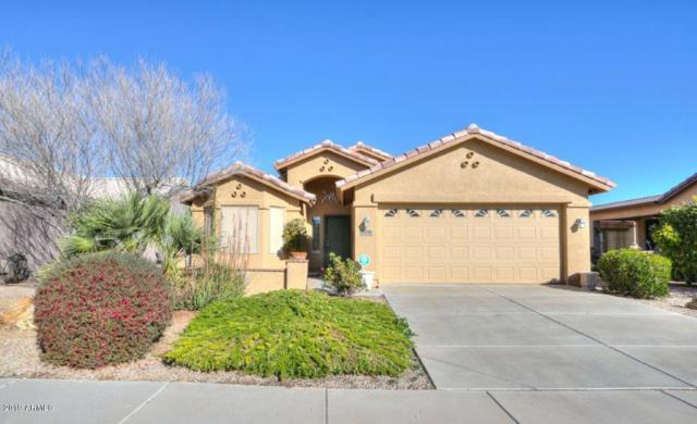 2674 E Desert Wind Drive, Casa Grande, AZ 85194 (MLS #5873433) :: Yost Realty Group at RE/MAX Casa Grande