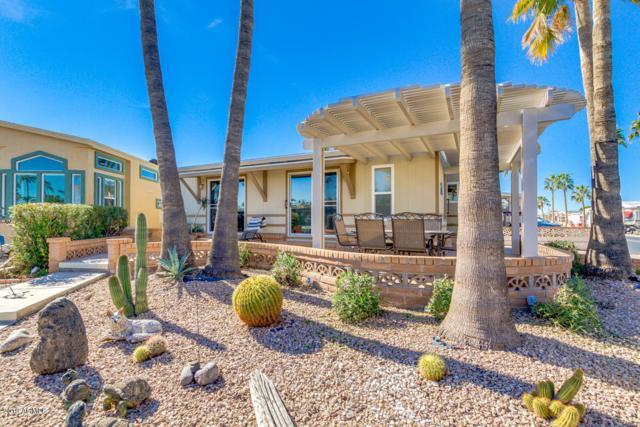 224 S Kiowa Circle, Apache Junction, AZ 85119 (MLS #5873473) :: Yost Realty Group at RE/MAX Casa Grande