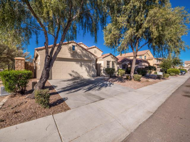 6732 S 35th Drive, Phoenix, AZ 85041 (MLS #5873478) :: The W Group