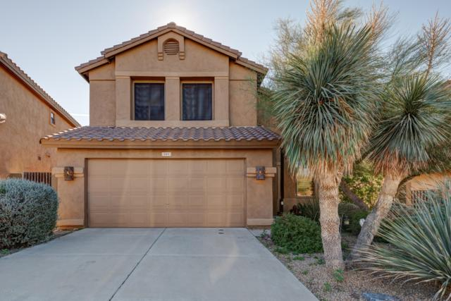 10441 E Star Of The Desert Drive, Scottsdale, AZ 85255 (MLS #5873554) :: The Property Partners at eXp Realty