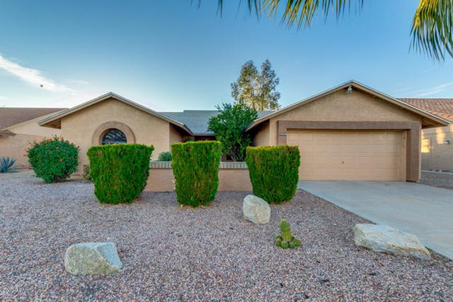 19910 N 98TH Lane, Peoria, AZ 85382 (MLS #5873587) :: The Pete Dijkstra Team