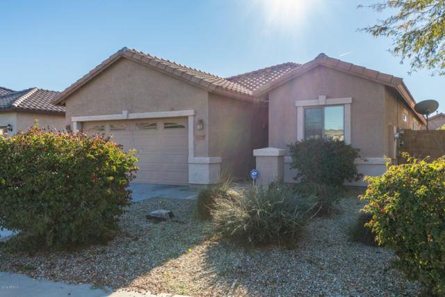 15299 W Morning Glory Street, Goodyear, AZ 85338 (MLS #5873717) :: The W Group