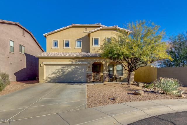 3632 W Amerigo Court, Phoenix, AZ 85086 (MLS #5873750) :: Devor Real Estate Associates