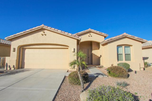 24922 S Glenburn Drive, Sun Lakes, AZ 85248 (MLS #5873819) :: RE/MAX Excalibur