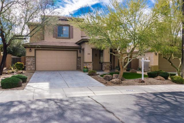 6817 W Evergreen Terrace, Peoria, AZ 85383 (MLS #5873849) :: The W Group