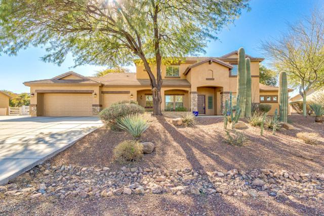 8867 W Golddust Drive, Queen Creek, AZ 85142 (MLS #5874017) :: Yost Realty Group at RE/MAX Casa Grande