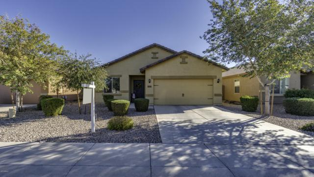 30155 N Oak Drive, Florence, AZ 85132 (MLS #5874041) :: RE/MAX Excalibur