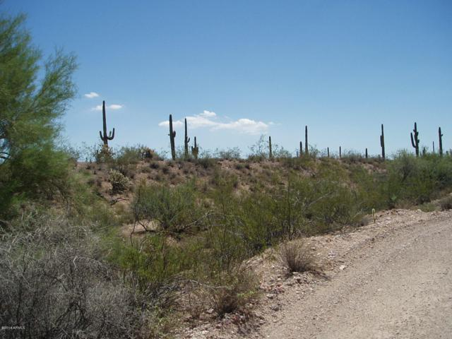 29499 W Olesen Road, Unincorporated County, AZ 85361 (MLS #5874078) :: Phoenix Property Group