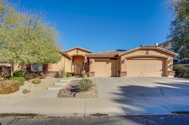 1892 E Kaibab Drive, Chandler, AZ 85249 (MLS #5874096) :: The Property Partners at eXp Realty