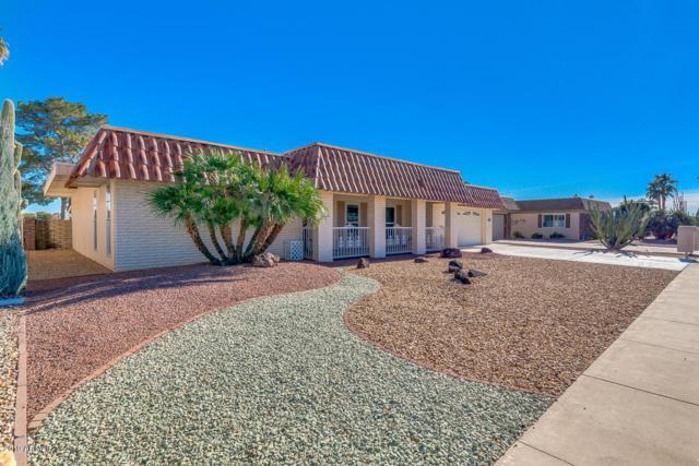 10629 W Welk Drive, Sun City, AZ 85373 (MLS #5874109) :: The Laughton Team