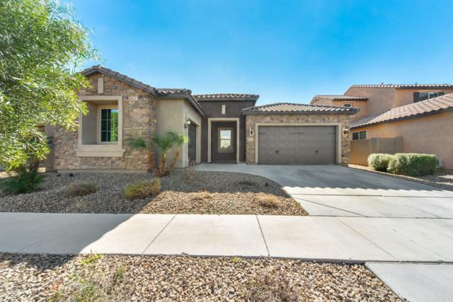 3531 E Franklin Avenue, Gilbert, AZ 85295 (MLS #5874143) :: The Property Partners at eXp Realty