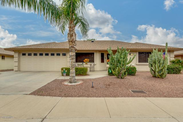 2146 S Olivewood Avenue, Mesa, AZ 85209 (MLS #5874189) :: RE/MAX Excalibur