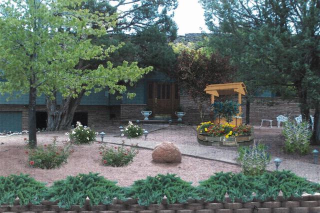 1207 N Camelot Drive, Payson, AZ 85541 (MLS #5874233) :: The W Group