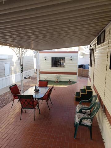1003 W Pawnee Avenue, Apache Junction, AZ 85119 (MLS #5874260) :: Yost Realty Group at RE/MAX Casa Grande