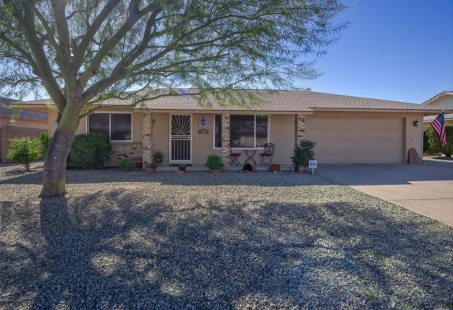 9619 W Willowbrook Drive, Sun City, AZ 85373 (MLS #5874294) :: The Property Partners at eXp Realty