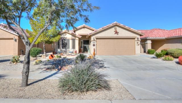2428 E Hancock Trail, Casa Grande, AZ 85194 (MLS #5874330) :: Yost Realty Group at RE/MAX Casa Grande
