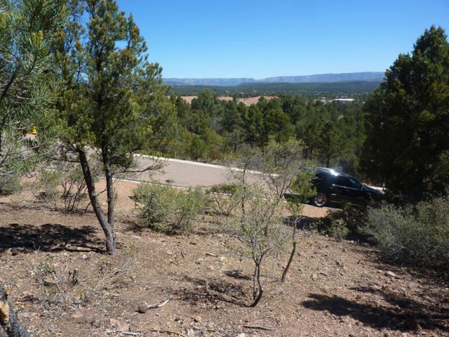 1911 E Starlight Pass, Payson, AZ 85541 (MLS #5874377) :: Conway Real Estate
