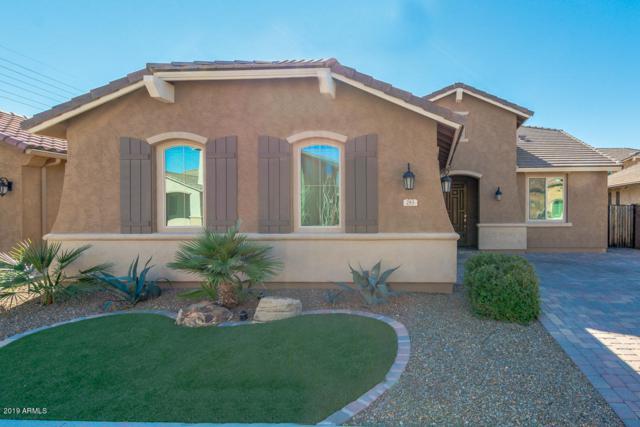 283 E Glacier Drive, Chandler, AZ 85249 (MLS #5874447) :: The W Group