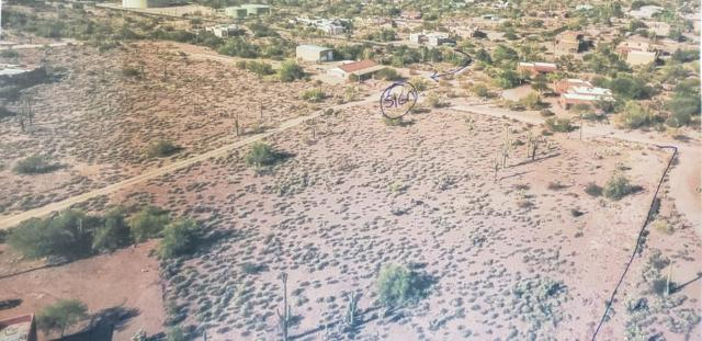 800 N Prospector Road, Apache Junction, AZ 85119 (MLS #5874479) :: Yost Realty Group at RE/MAX Casa Grande