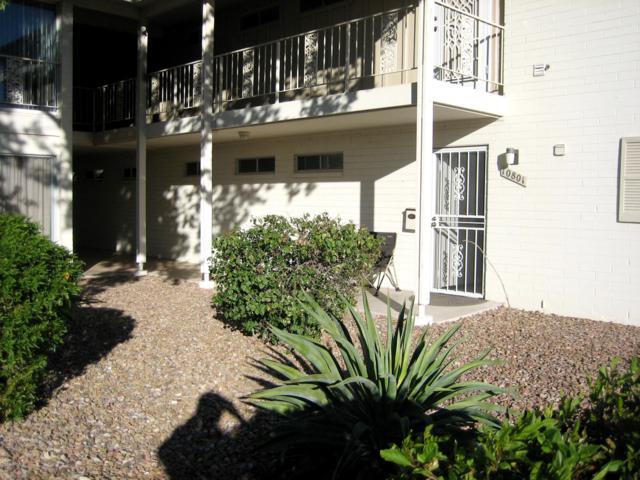 10801 N Fairway Court E, Sun City, AZ 85351 (MLS #5874488) :: Lux Home Group at  Keller Williams Realty Phoenix