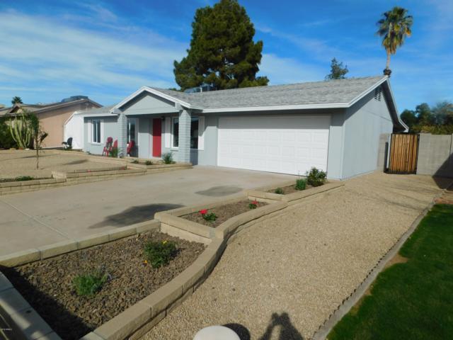 17217 N 34TH Street, Phoenix, AZ 85032 (MLS #5874522) :: The Pete Dijkstra Team