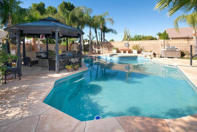20638 N 16TH Way, Phoenix, AZ 85024 (MLS #5874612) :: Yost Realty Group at RE/MAX Casa Grande
