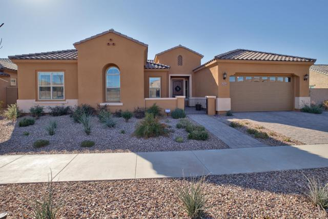 4744 S Ion Lane, Mesa, AZ 85212 (MLS #5874644) :: Lucido Agency