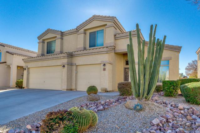 3445 W Mineral Butte Drive, Queen Creek, AZ 85142 (MLS #5874718) :: The Everest Team at My Home Group