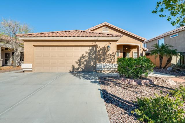 7454 W Mohawk Lane, Glendale, AZ 85308 (MLS #5874872) :: CC & Co. Real Estate Team
