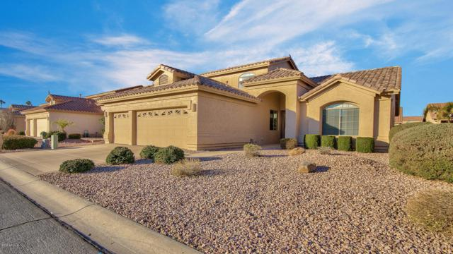 25022 S Lakeway Drive, Sun Lakes, AZ 85248 (MLS #5875038) :: Yost Realty Group at RE/MAX Casa Grande