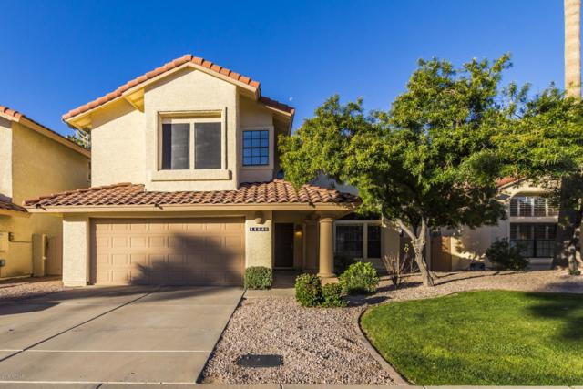 11640 N 91ST Lane, Scottsdale, AZ 85260 (MLS #5875119) :: Yost Realty Group at RE/MAX Casa Grande