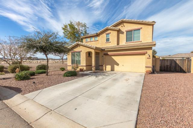 34346 N Levi Court, Queen Creek, AZ 85142 (MLS #5875130) :: The Property Partners at eXp Realty